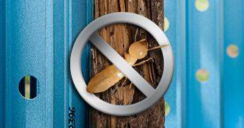 ssframes-termiteproof